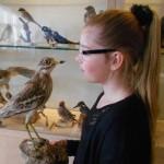 Vanaf 1 juli Museumjaarkaart-houders welkom in het Pieter Vermeulen Museum!