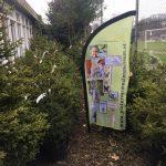 Al bijna 65 kerstbomen geadopteerd bij het Pieter Vermeulen Museum!